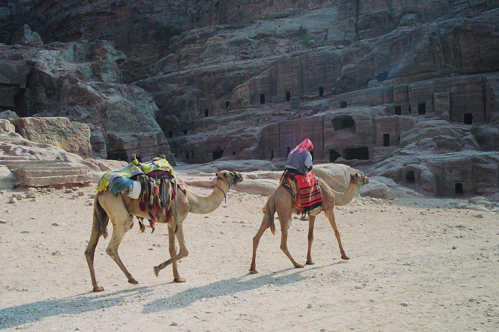 bedouin, dromedaries, petra-174182.jpg